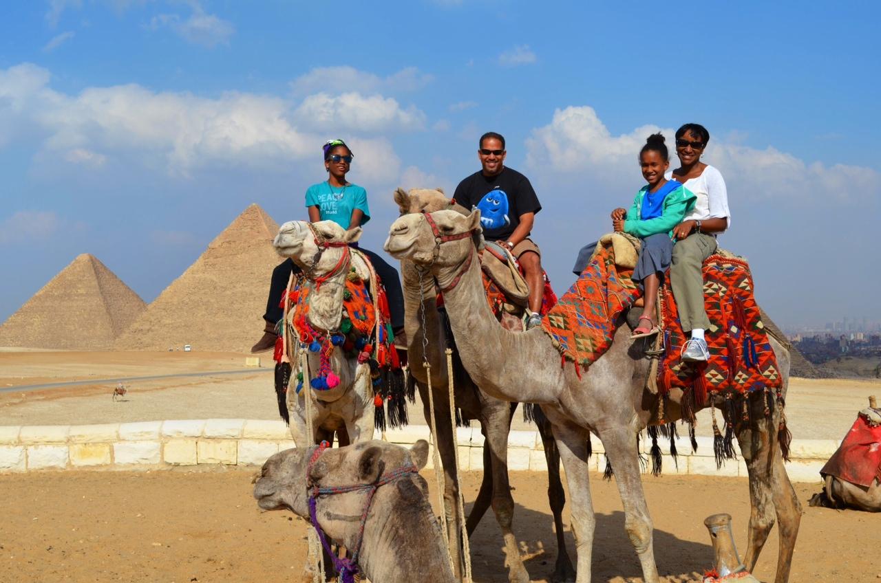 egyptfamcamels