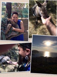 Joy's Amazing Adventures In Australia!