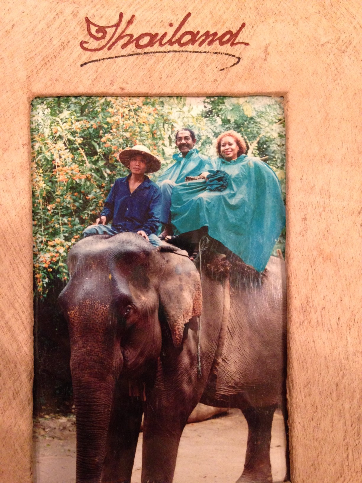 My Mother with a good family friend riding an elephant in Thailand!
