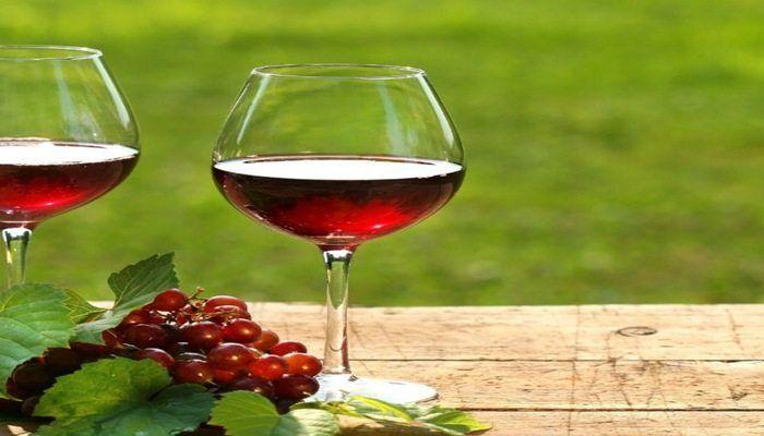 For Wine Lovers: Worldwide Bucket List Wine Festivals!