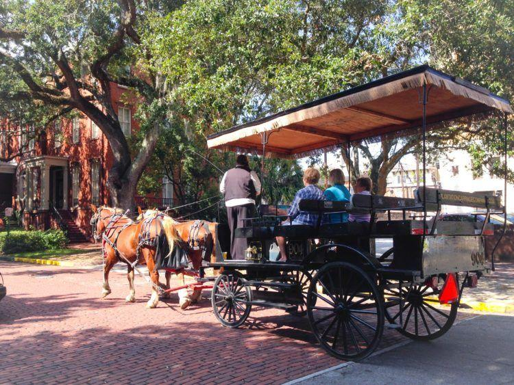 horses and carriage in Savannah