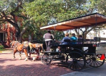 Top 6 Atlanta Road Trip Ideas! Take a carriage ride in Savannah, go to the beach on Hilton Head Island and visit a blues bar in Nashville!