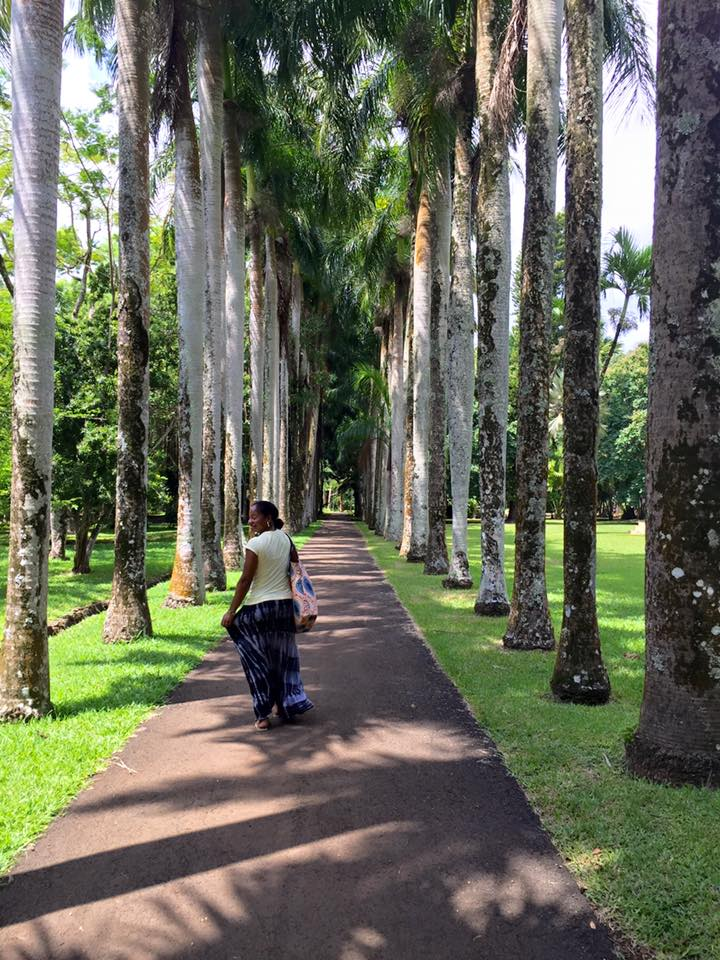 Indian Ocean Island Hopping! A Travel guide to Zanzibar, Seychelles, Mauritius and Reunion Islands!