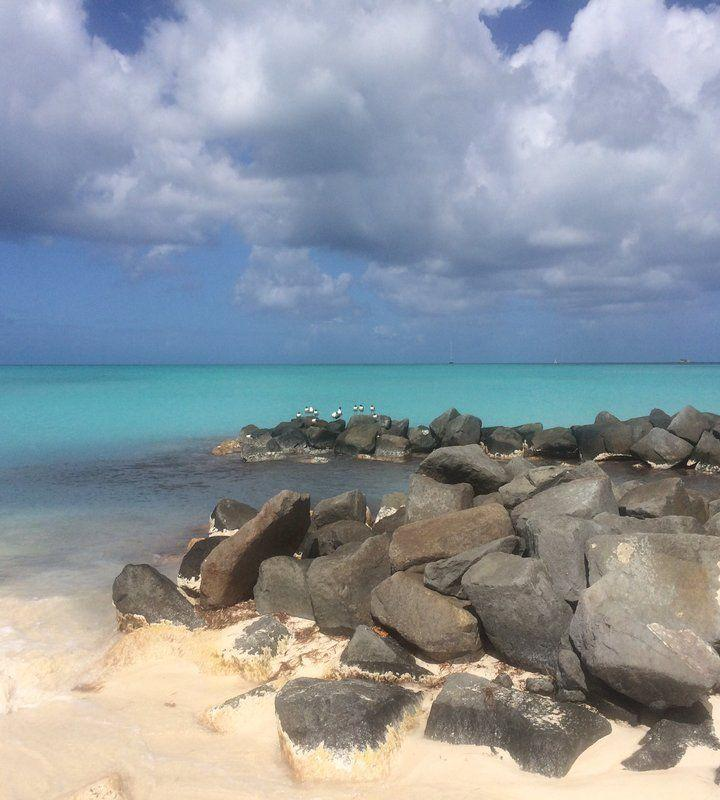 10 Fun Facts About Antigua!