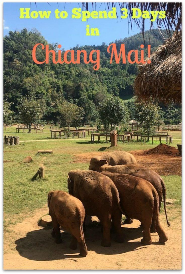 How to Spend 3 Days in Chiang Mai Thailand! Visit temples, an elephant nature park, go shopping and visit a luxury spa!