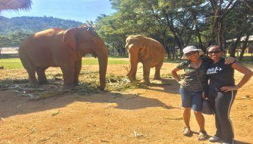 3 days In Chiang Mai! Things to Do, See & Eat! This article gives you a 3 day travel itinerary through the beautiful area of Chiang Mai Thailand. You can experience adventure by hiking, trekking or visiting an elephant nature park, go shopping in the night markets, take a cooking class, go to a luxury spa and of course visit amazing temples!