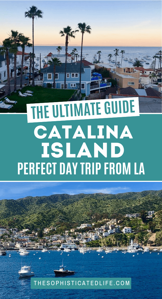 The perfect day trip to catalina island