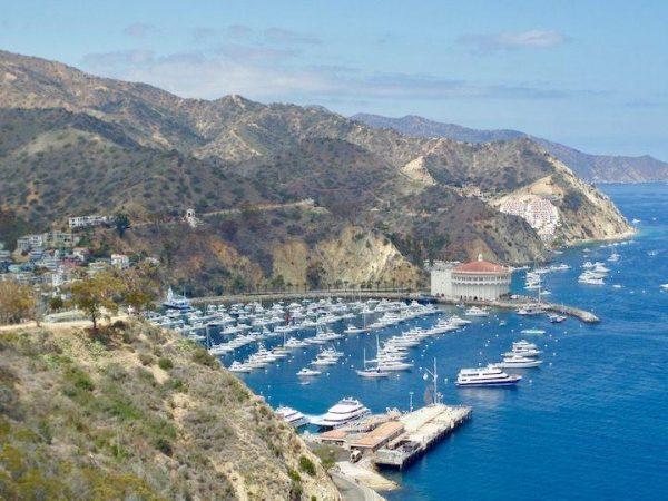 the marina at Santa Catalina Island