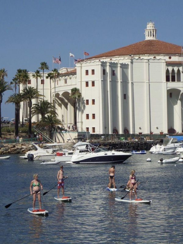 people using stand up paddle boards at Catalina Island