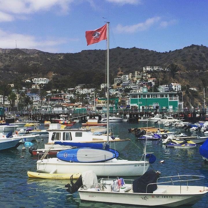 A Catalina Island Day Trip from Los Angeles!