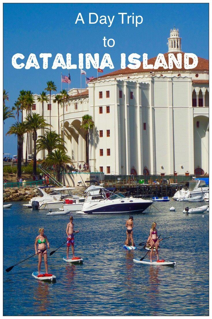 A Catalina Island Day Trip from Los Angeles! Learn when to go, how to get there and what to see!