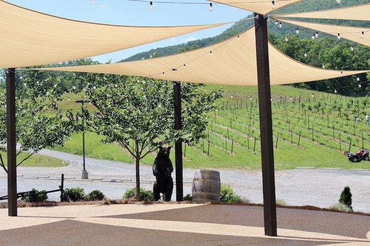 Wine Tasting In & Around Helen Georgia: The Unicoi Wine Trail!