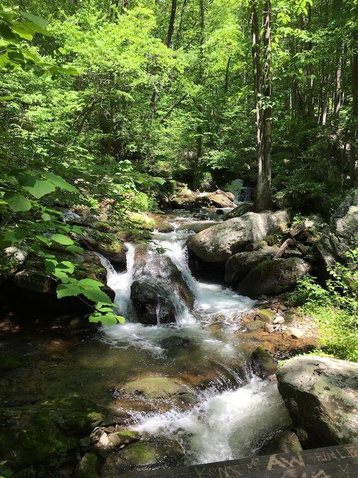 a cascading stream at Unicoi State Park