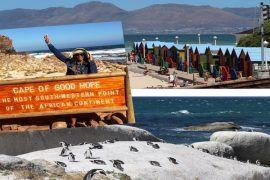 cape town road trip. take a day trip from cape town south africa to the cape peninsula. boulders beach, muizenberg beach, cape of good hope, cape point