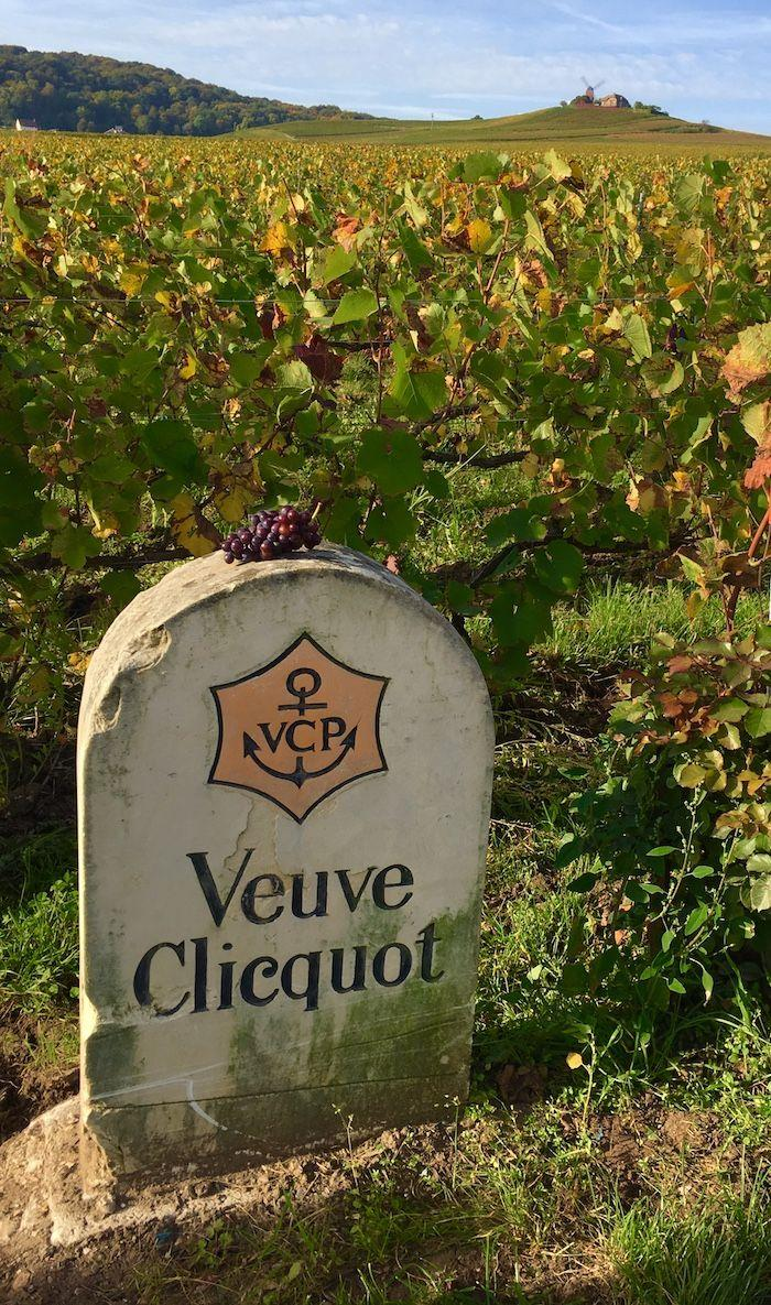 The Veuve Clicquot sign in the vineyard