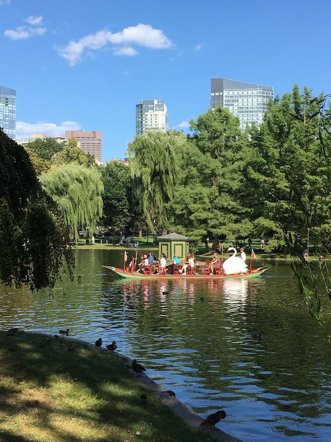 Boston, Massachusetts, Boston Public Gardens, Boston during the summer, Martha's Vineyard. Things to see & do in Boston during the summer, summertime in Boston