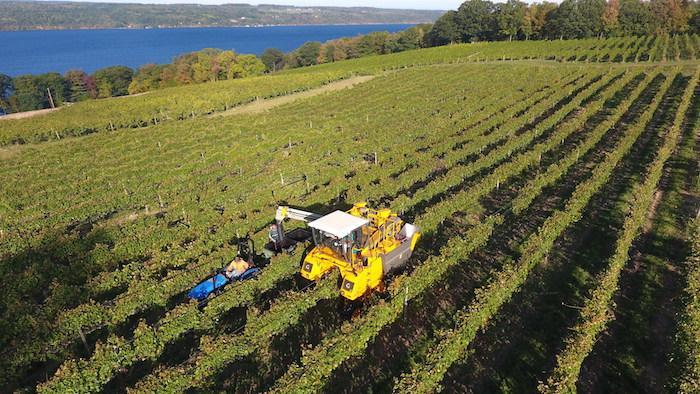 6 Amazing Reasons to Visit Finger Lakes & Corning New York, Corning Museum of Glass, Finger Lakes Wine Country, Seneca Lake Wine Trail