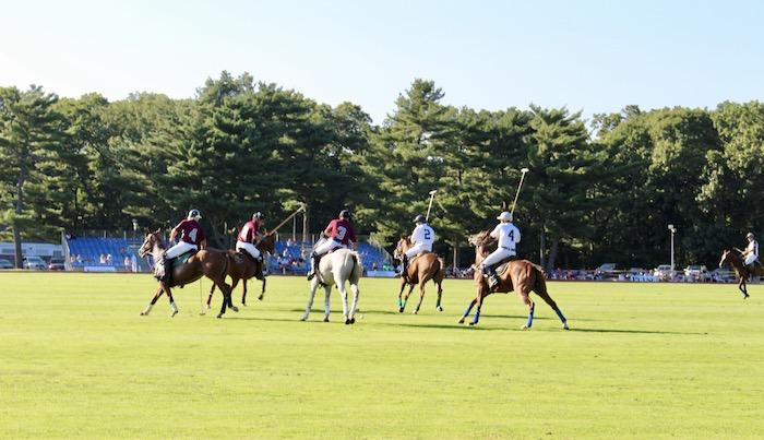 long island polo match