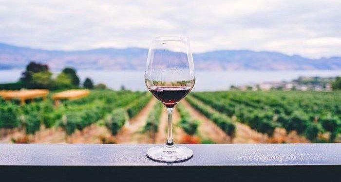 pacific northwest road trip for wine lovers, pacific northwest vacation, pacific northwest itinerary