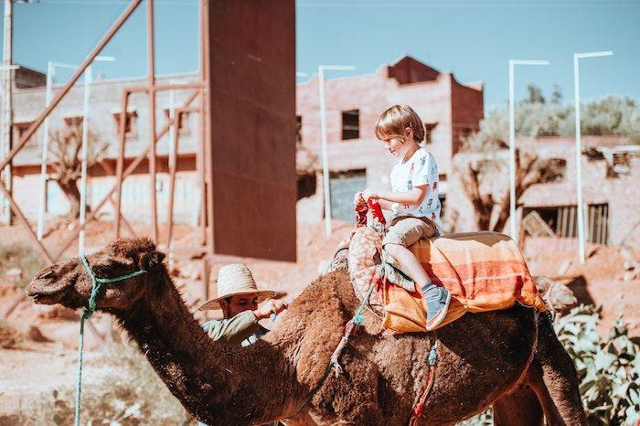 young boy on camel