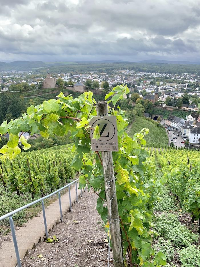mosel germany, riesling wine in mosel germany, riesling wines, german wines, mosel river, mosel river valley