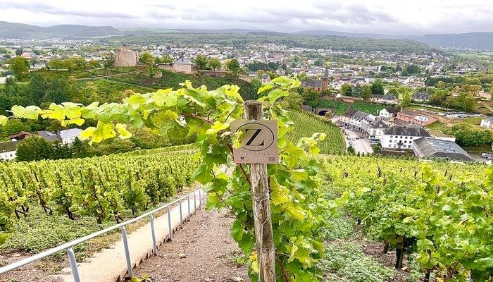 mosel germany, guide to riesling wine in mosel germany, riesling wines, german wines