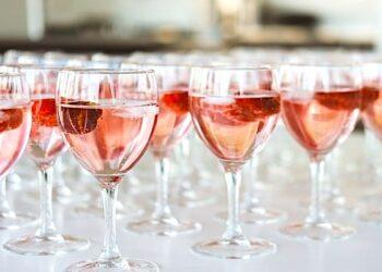 rosé wine, food and wine, rosé wine 101, rosé wine guide, wine information, red wine, red wine, wine tasting, wine pairings, wine festivals, rosé wine food pairings