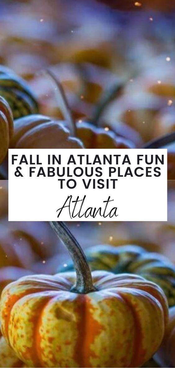 fall in Atlanta, Atlanta in the fall, Pumpkin patches, places to visit in Atlanta, fall fun in Atlanta, fun & fabulous places to visit in Atlanta